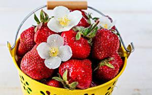 Fotos Erdbeeren Eimer