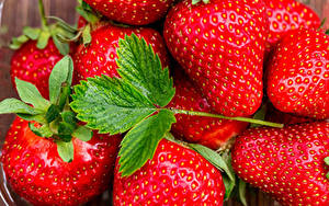 Fotos Erdbeeren Nahaufnahme Blatt Lebensmittel