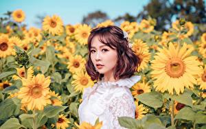Fotos Sonnenblumen Asiaten Acker Unscharfer Hintergrund Braune Haare Blick junge frau Blumen