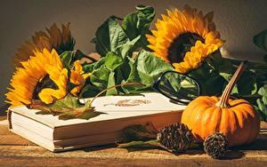 Desktop hintergrundbilder Sonnenblumen Kürbisse Stillleben Buch Brille Zapfen Blattwerk Blüte Lebensmittel