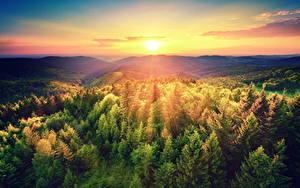 Fotos Sonnenaufgänge und Sonnenuntergänge Landschaftsfotografie Wälder Himmel Sonne