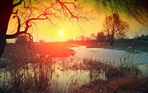 Hintergrundbilder Sonnenaufgänge und Sonnenuntergänge Flusse Sonne Ast