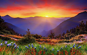 Bilder Morgendämmerung und Sonnenuntergang Gebirge Landschaftsfotografie Gras Lichtstrahl
