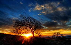 Hintergrundbilder Sonnenaufgänge und Sonnenuntergänge Himmel Lichtstrahl Bäume Sonne