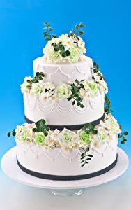 Fotos Süßigkeiten Torte Rosen Farbigen hintergrund Design
