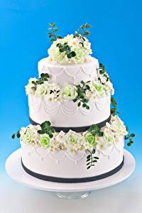 Fotos Süßigkeiten Torte Rosen Farbigen hintergrund Design Lebensmittel