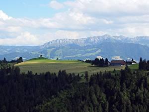 Photo Switzerland Forest Fields Mountain Horizon Napf Bereich, Kanton Bern Nature