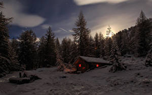 Image Switzerland Houses Winter Forest Spruce Night time Snow Alps Nature