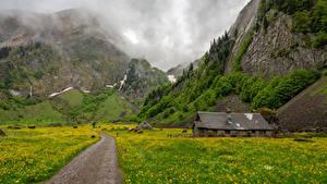 Fotos Schweiz Gebirge Grünland Alpen Gras Appenzell