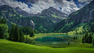 Bilder Schweiz Gebirge See Landschaftsfotografie Alpen Fichten Lauenen, Bern