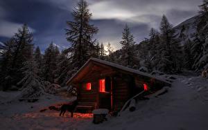 Picture Switzerland Winter Spruce Night Snow Alps Nature
