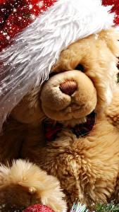 Fotos Teddybär Feiertage Neujahr Mütze Schneeflocken