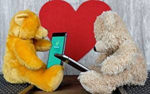 Fotos Teddy 2 Sitzend Smartphone Herz