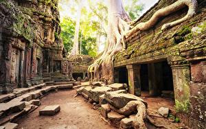 Hintergrundbilder Tempel Ruinen Laubmoose Angkor Wat Biggest Hindu temple Cambodia Städte