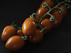 Bilder Tomate Ast das Essen