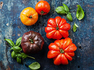 Bilder Tomate Nahaufnahme Blatt Lebensmittel