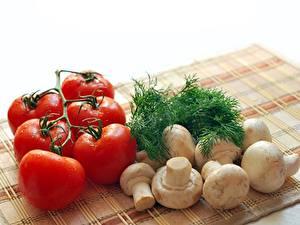 Bilder Tomate Dill Pilze Zucht-Champignon
