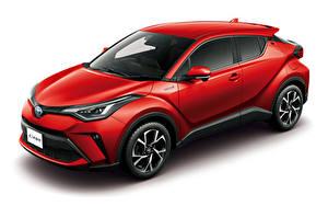 Hintergrundbilder Toyota Weißer hintergrund Rot Hybrid Autos 2019 C-HR Hybrid automobil