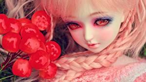 Fotos Spielzeuge Beere Puppe Blick Make Up Zopf junge Frauen