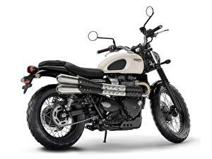 Photo Triumph Motorcycles Ltd White background Side 2016-19 Street Scrambler Motorcycles
