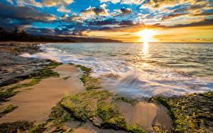 Fotos Tropen Vereinigte Staaten Sonnenaufgänge und Sonnenuntergänge Küste Wasserwelle Ozean Hawaii Laubmoose Wolke Sonne