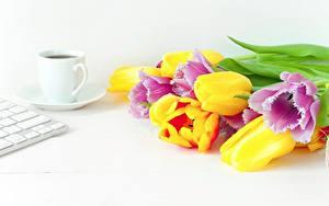 Bilder Tulpen Sträuße Kaffee Bunte Tasse Blumen Lebensmittel