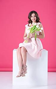 Bilder Tulpen Braunhaarige Lächeln Kleid Sitzend
