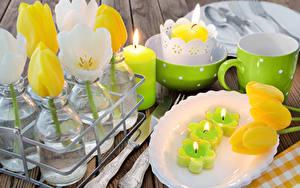 Bilder Tulpen Kerzen Teller Tasse Blumen