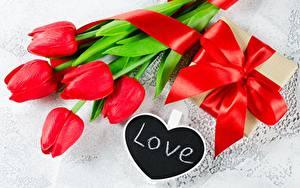 Hintergrundbilder Tulpen Liebe Rot Geschenke Schleife Englischer Blumen