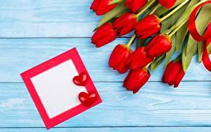 Bilder Tulpen Valentinstag Rot Vorlage Grußkarte Herz Blumen