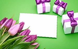 Bilder Tulpen Violett Geschenke Vorlage Grußkarte Blüte