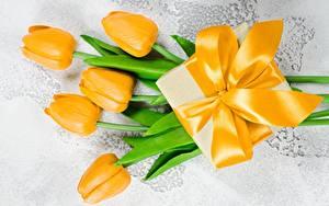 Fotos Tulpen Gelb Geschenke Schleife Blumen