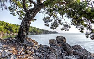 Hintergrundbilder Türkei Küste Steine Bäume HDRI Phaselis