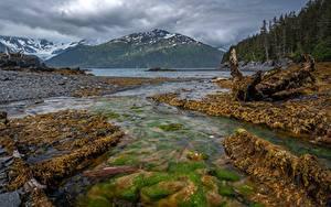 Fotos Vereinigte Staaten Alaska Berg Stein Flusse Wälder Whittier Natur