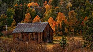 Bilder Vereinigte Staaten Herbst Wald Haus Kalifornien Fichten Hope Valley Natur
