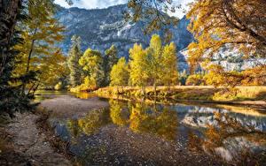 Bilder USA Herbst Flusse Berg Yosemite Bäume Merced River Natur