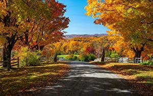 Fotos USA Herbst Wege Bäume Zaun Blattwerk Woodstock, Vermont Natur