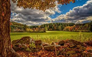 Bilder USA Herbst Steine Grünland Wälder HDR Norfolk, Virginia