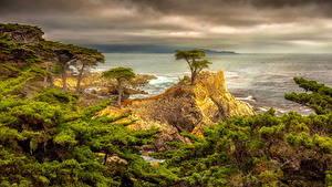 Desktop hintergrundbilder USA Küste Kalifornien Wolke Bäume Felsen HDR Natur