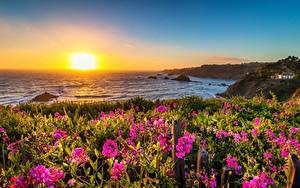 Bureaubladachtergronden Amerika De kust Zonsopgangen en zonsondergangen Californië Zon Mendocino