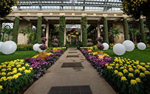 Fotos USA Garten Chrysanthemen Design Kugeln Longwood Gardens Natur
