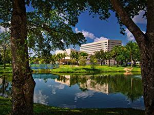 Hintergrundbilder Vereinigte Staaten Gebäude Brücke Kanal Bäume Miam Florida International University Städte