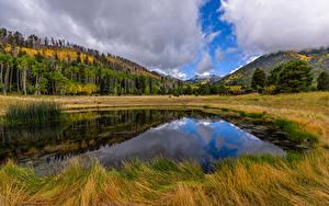 Hintergrundbilder USA Morgen Berg Wälder Wolke Sumpf Arizona, Lockett Meadow