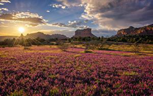 Fotos Vereinigte Staaten Morgen Gebirge Grünland Himmel Sonne Sedona, Arizona