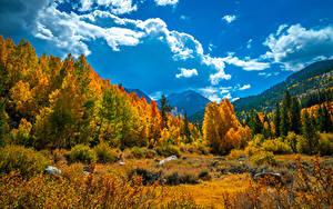 Fotos Vereinigte Staaten Gebirge Herbst Landschaftsfotografie Kalifornien Bäume Wolke
