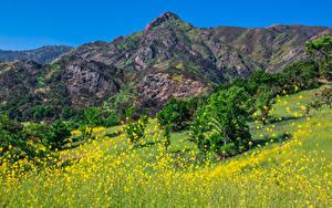 Fotos Vereinigte Staaten Berg Park Kalifornien Malibu Creek State Park