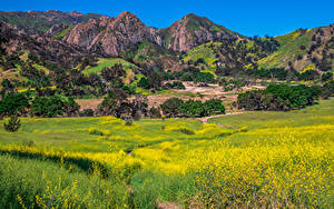 Hintergrundbilder USA Gebirge Frühling Parks Kalifornien Malibu Creek Natur