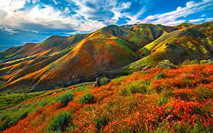 Fotos Vereinigte Staaten Gebirge Frühling Kalifornien Wolke Walker Canyon