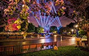 壁纸、、アメリカ合衆国、公園、ディズニーランド、道、カリフォルニア州、アナハイム、夜、デザイン、街灯、光線、塀、自然