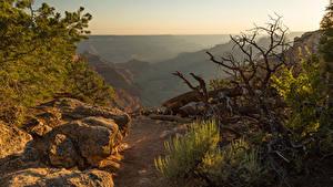 Hintergrundbilder Vereinigte Staaten Parks Grand Canyon Park Stein Felsen Arizona Natur